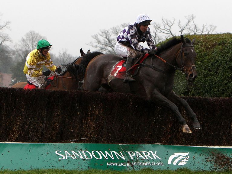 Merrion Square: Won comfortably at Sandown