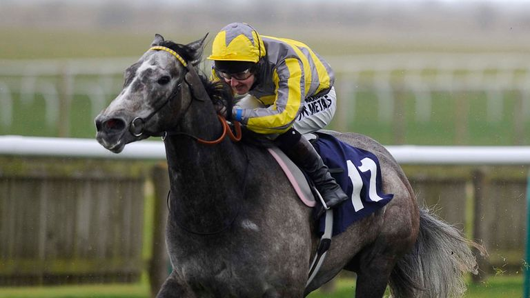 Tickled Pink: Supplemented for York feature