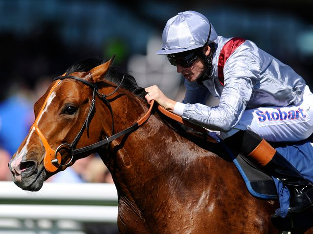 Olympic Glory: Favourite for JLT Lockinge Stakes at Newbury