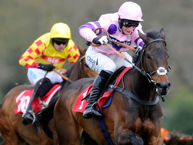 Ptit Zig: Haydock hopeful