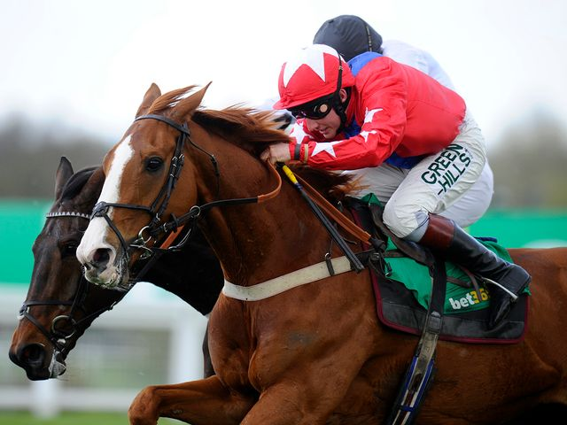 Sire De Grugy: Ascot hopeful