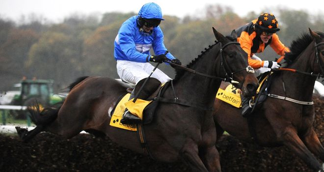 Cappa Bleu looks to have a good chance in the Grand National this year.