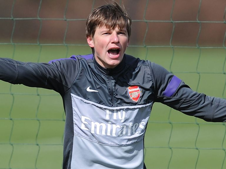 Andrey Arshavin: Likely to leave Arsenal at the end of his contract this summer