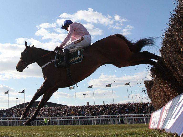 Captain Conan: Can prove an able deputy for the absent Sprinter Sacre