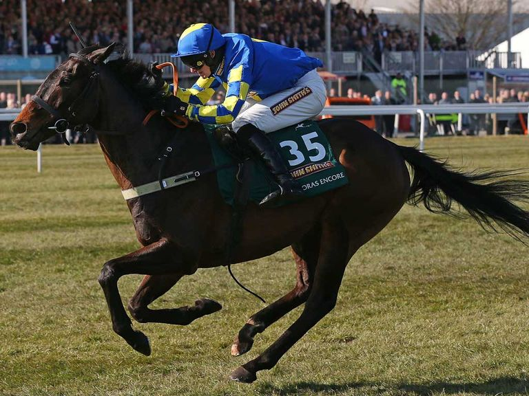 Auroras Encore: 25/1 to win the Grand National again in 2014