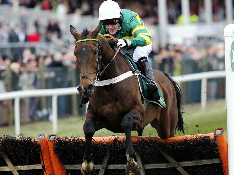 My Tent Or Yours: Fancied to put down a Champion Hurdle marker