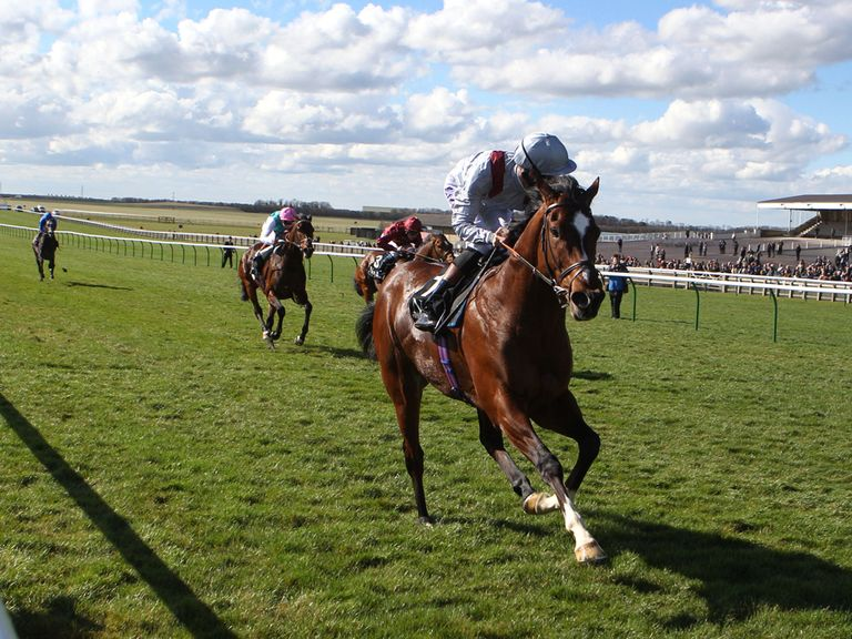 Toronado: Impressive winner of the Craven Stakes