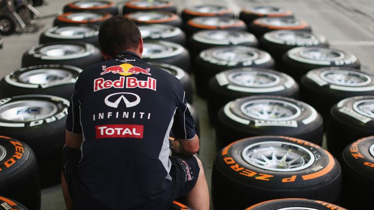 Pirelli's tyres have been causing Red Bull concern