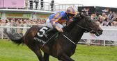 Alex Hammond tips Magician for Irish 2000 Guineas