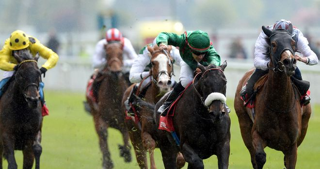 Ambivalent (far right): Middleton Stakes entry