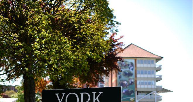 York: All set for the Dante meeting despite a small fire