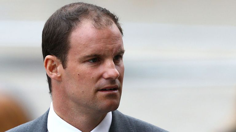 Andrew Strauss: Believes appointment of Darren Lehmann could be a risk worth taking