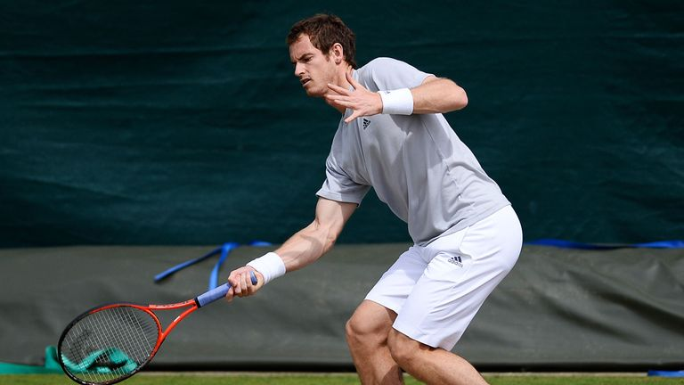 Andy Murray: Has received backing from former Davis Cup teammate Tim Henman