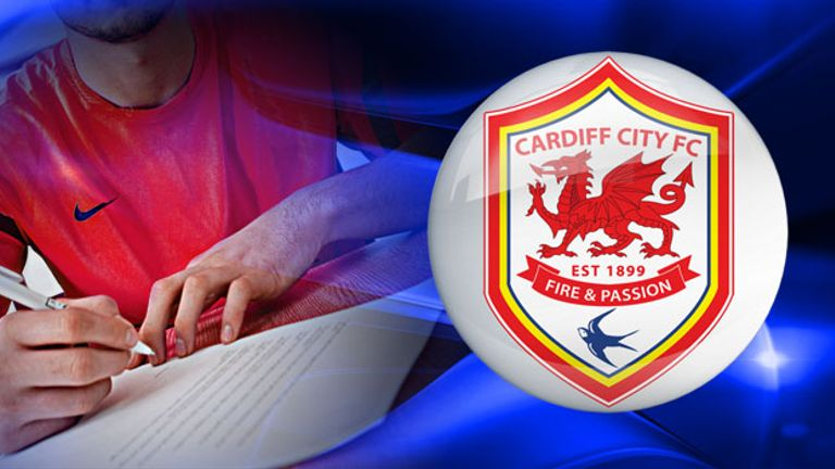 Cardiff's squad needs all-round investment, but a striker will be key
