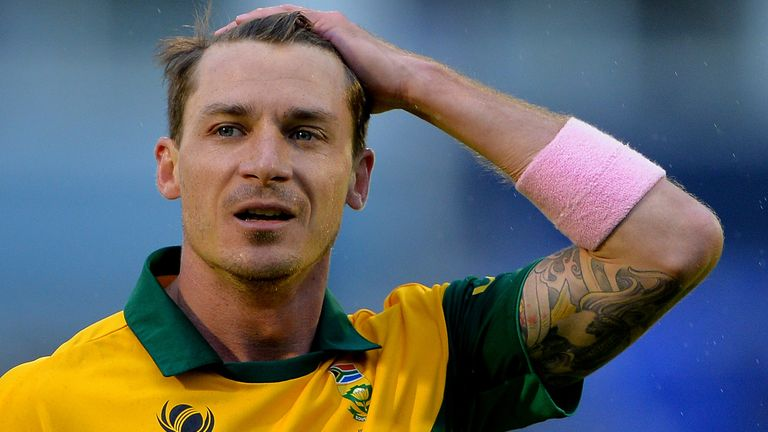 Dale Steyn: Played a key role for South Africa