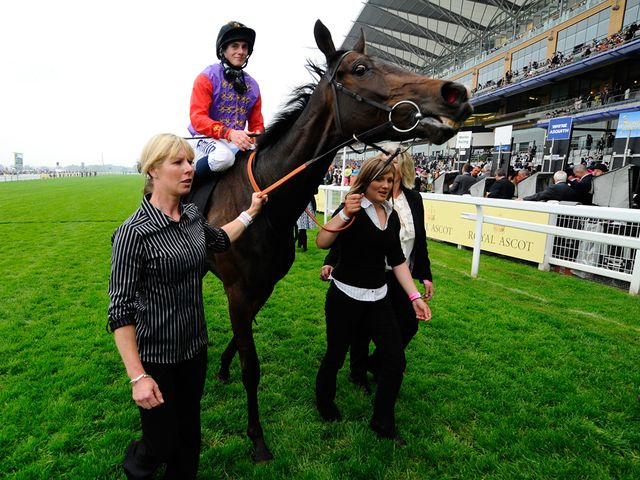 Estimate: Ascot hopeful