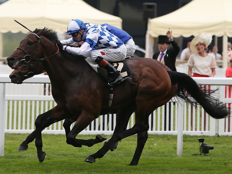 Al Kazeem: Still at the top of the Cartier Horse Of The Year standings
