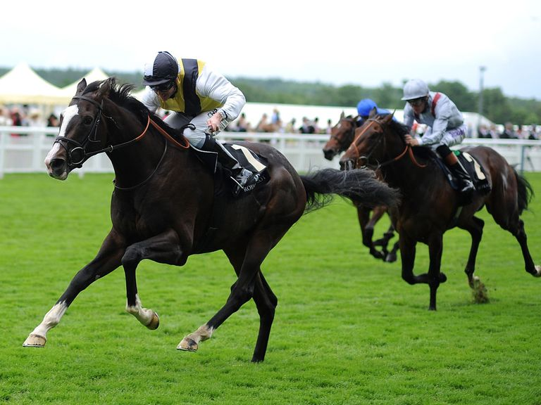 Berkshire: Bids to cement Chesham form at Newmarket