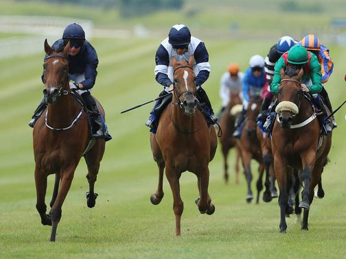 Tapestry (left): Added to Curragh line-up by O'Brien