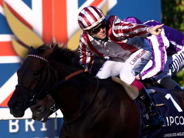 Cirrus Des Aigles: Landed yet another Group One at Longchamp.