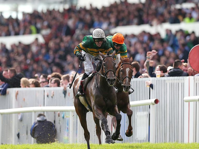 Carlingford Lough: Can McCoy have his day?