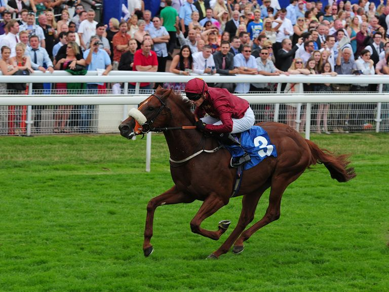 Hot Streak: Man On The Spot's tip for the Temple Stakes