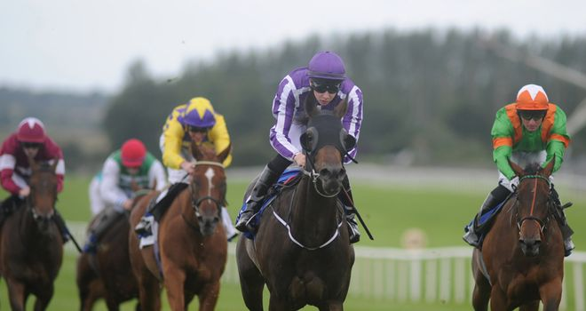 Terrific: Hoping to add to Aidan O'Brien's fine record in the race