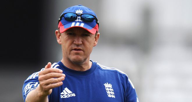 Andy Flower: Praised England but believes they must improve in Australia