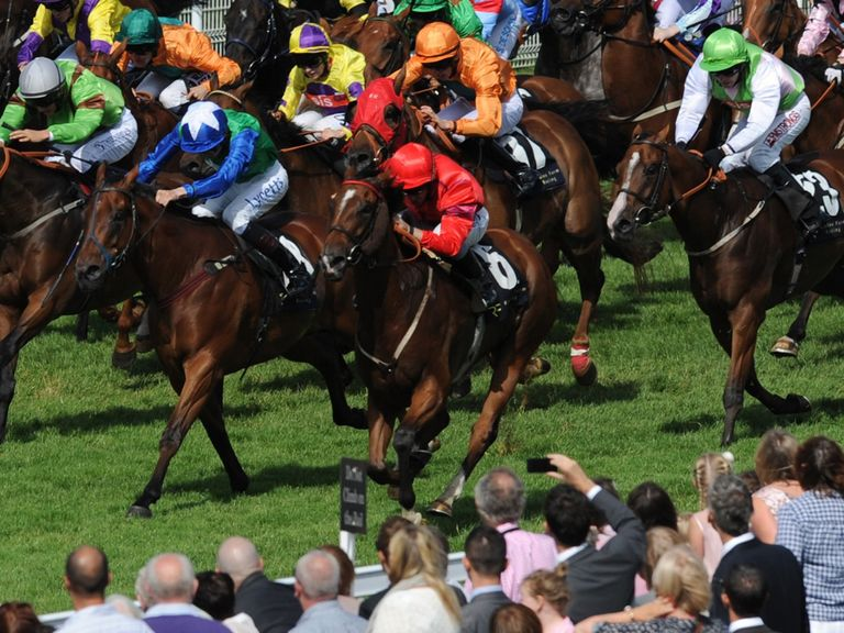 Rex Imperator: Can land the Sprint Cup