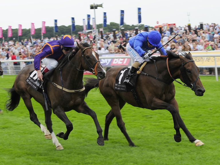 Simenon (left): Melbourne Cup hopeful