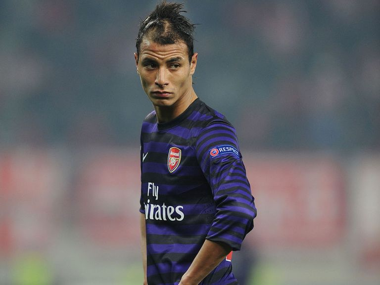 Marouane Chamakh: Set to join Crystal Palace on a one-year contract