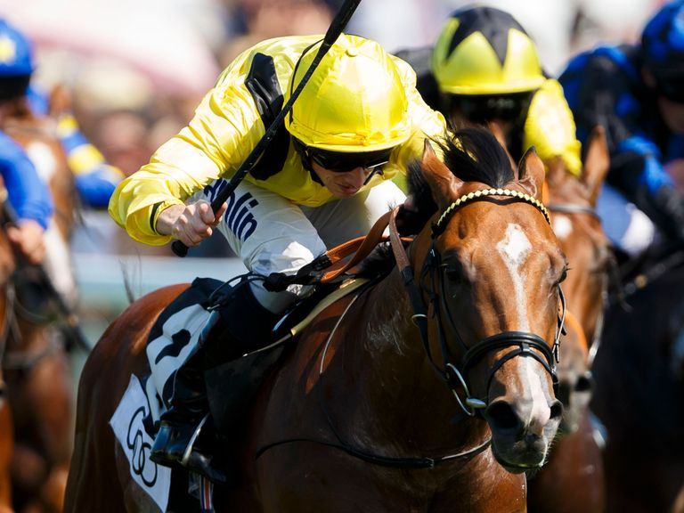 Saayerr: Aiming for Gimcrack glory