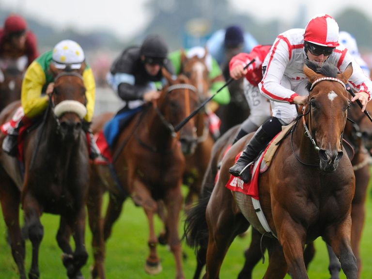 Tiger Cliff: Can overcome obstacles and win the Cesarewitch