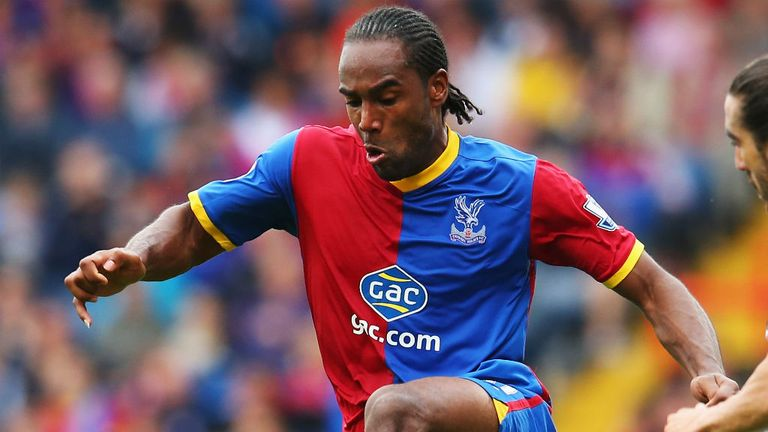 Cameron Jerome: Backing Tony Pulis to keep Crystal Palace up