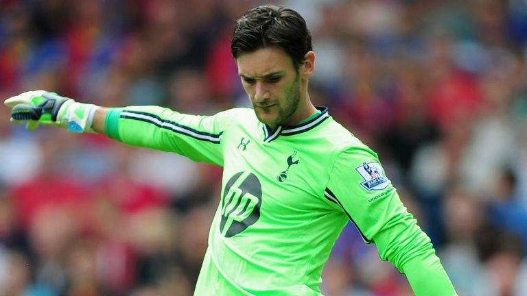 Hugo Lloris: Stayed on despite the advice of the medical department