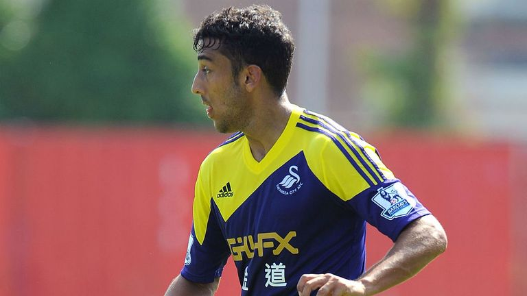 Neil Taylor: Swansea defender a target for Fulham