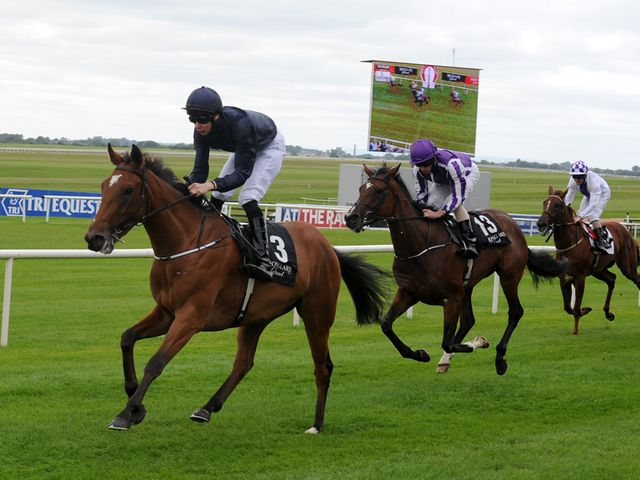Dazzling: Impressed at Navan