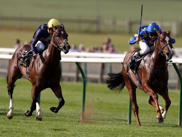 Cable Bay can't reel in Miracle Of Medinah at Newmarket