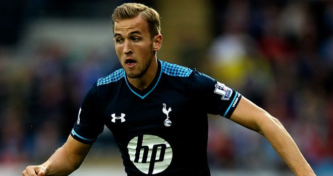 Harry Kane: in action for Spurs against Cardiff in the Premier League