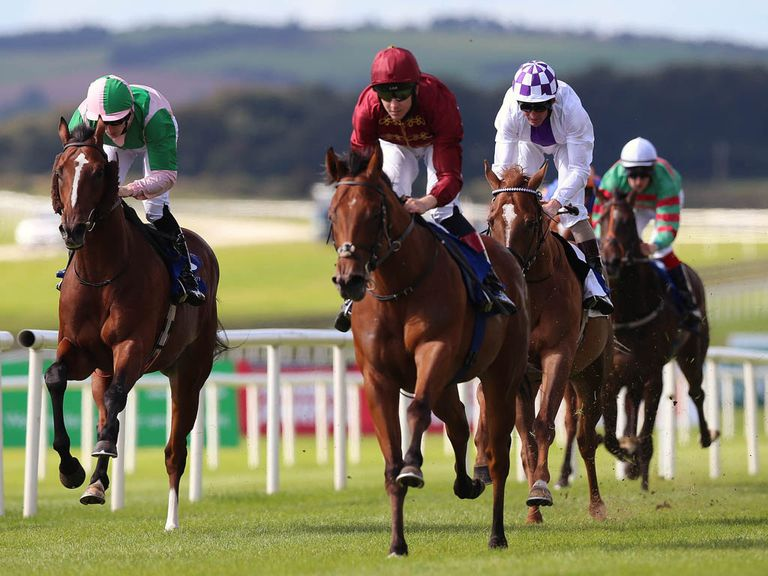 Obliterator impressed in winning the opener