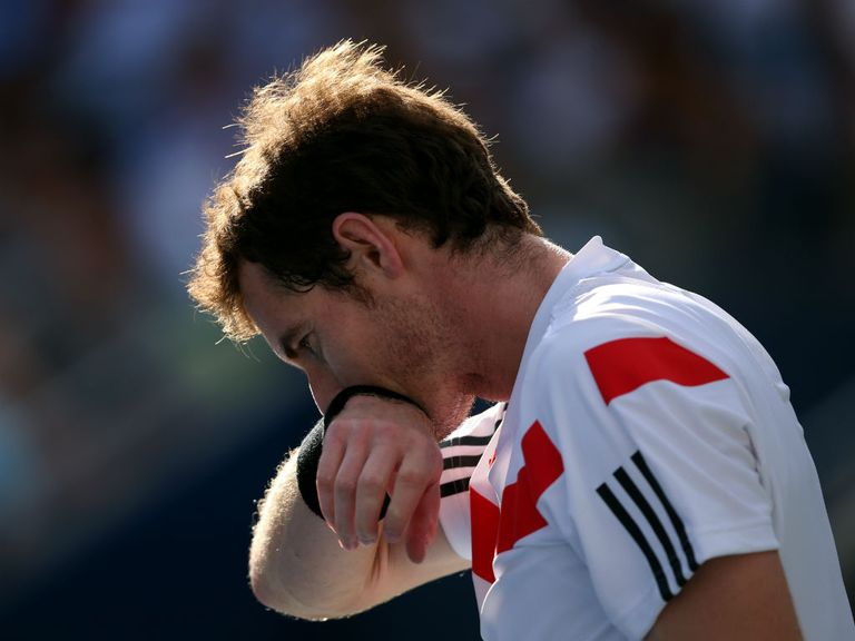 Andy Murray: Set to return to action on Boxing Day