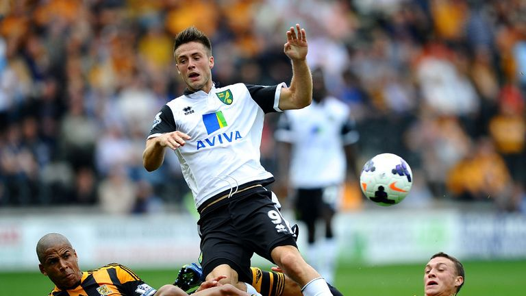 Rickie van Wolfswinkel: Backed by Hughton