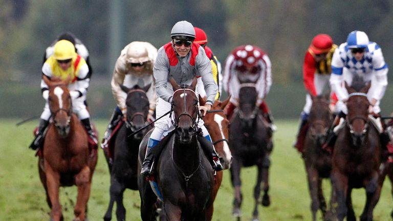 Treve: Ran out brilliant winner of the Arc at Longchamp
