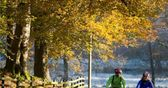Autumn cycle groups