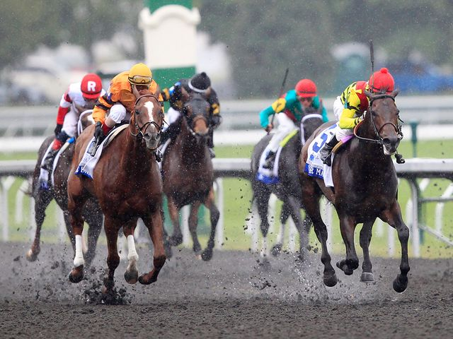 Silver Max gets the better of Wise Dan (Keeneland photo)