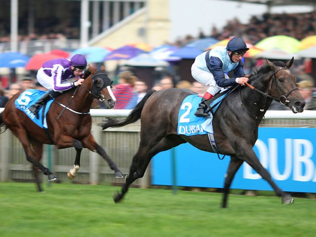 Kingston Hill: Supplemented for Racing Post Trophy