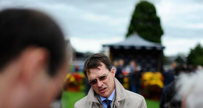 Aidan O'Brien: Looks set to be among the winners at Meydan on Saturday