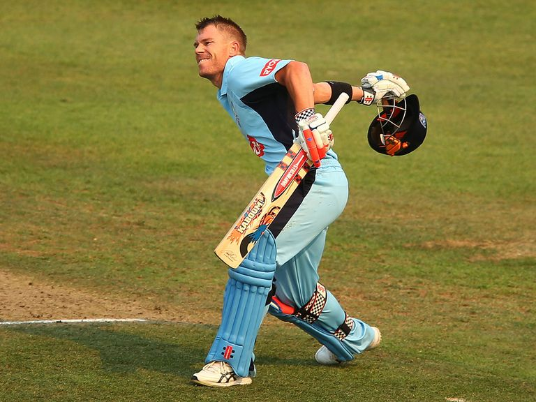 David Warner: Blasted his way to 197