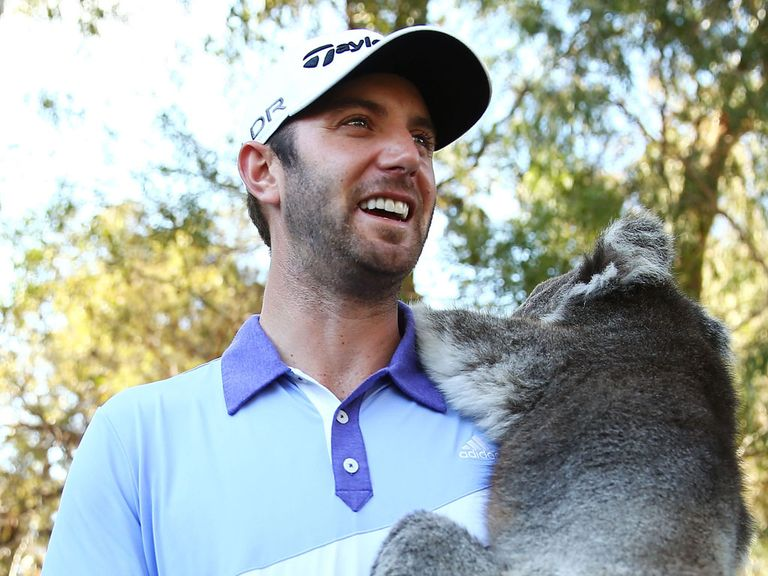 Dustin Johnson: Worth backing at the price