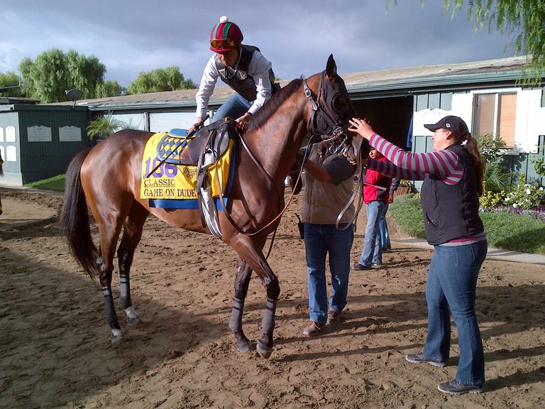 Getting up close and personal with Game On Dude (photo by S Clare)